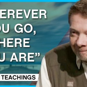 Why Are We Never Happy?   Eckhart Tolle Teachings